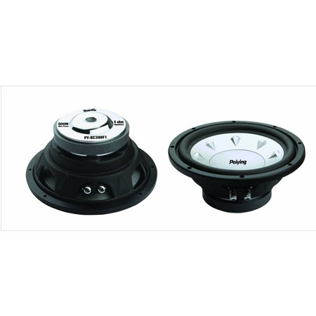 SUBWOOFER AUTO 250MM 300W | wauu.ro